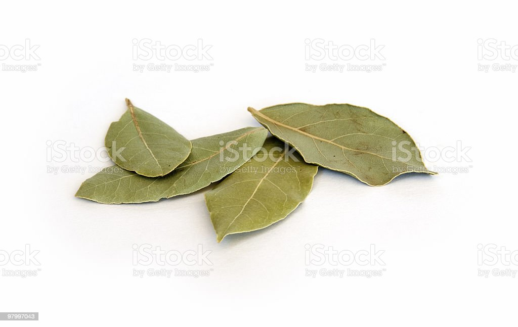 Dry bay leaves on white stock photo