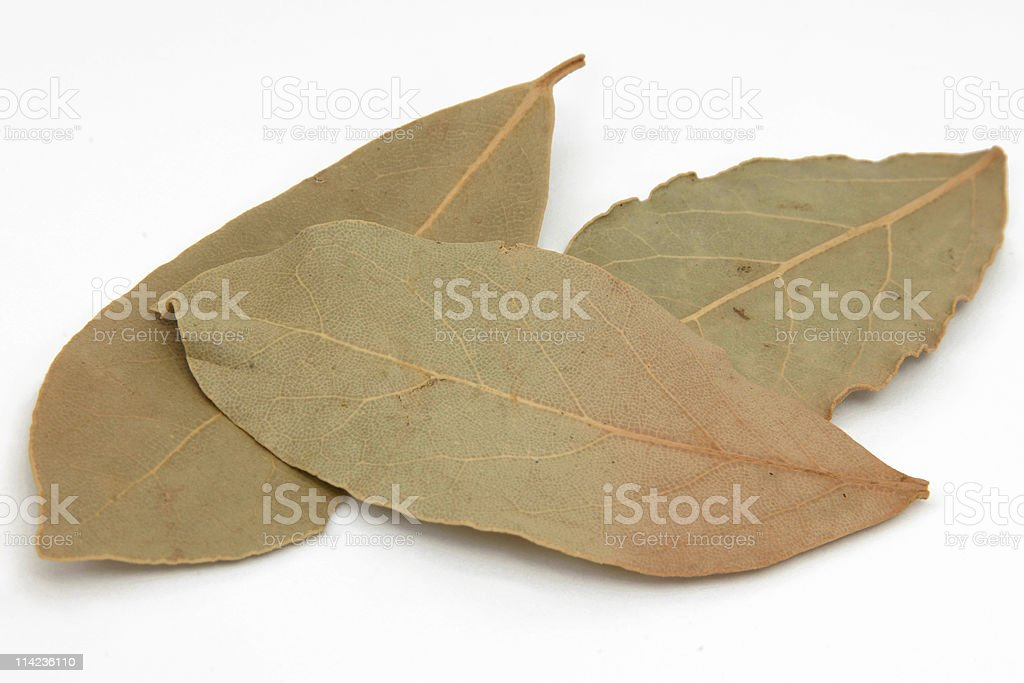 Dry Bay Leaves royalty-free stock photo