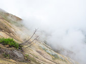 Dry bush with grass growing on slopes smoking volcano crater