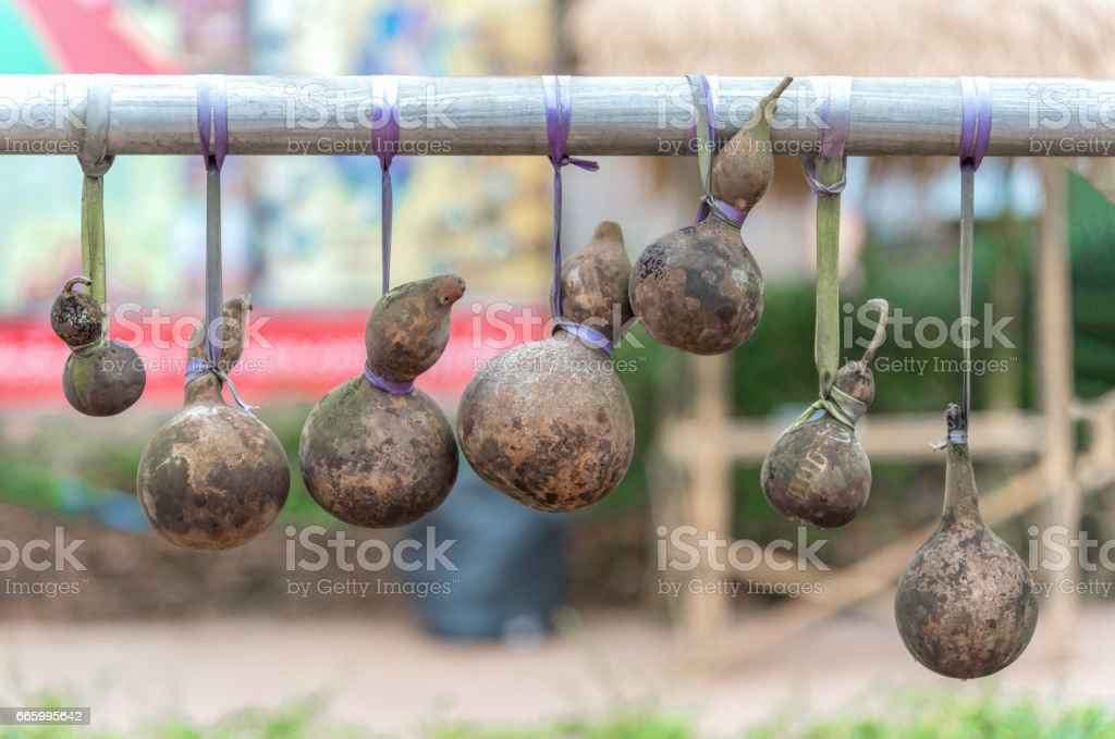 Dry calabash hang on the wooden. stock photo