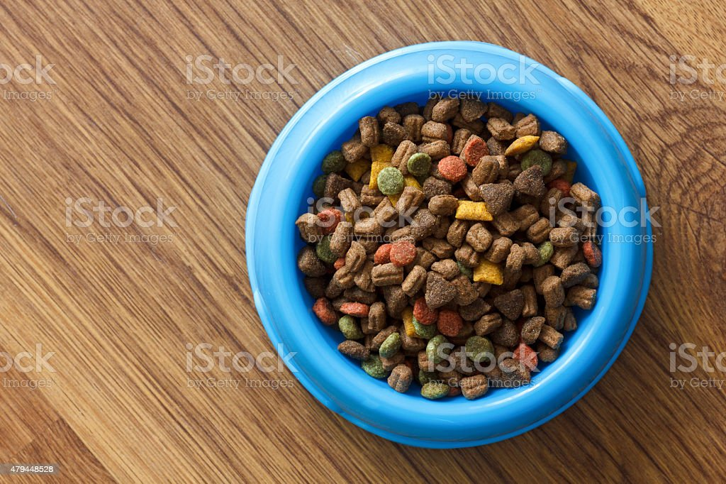 Dry cat food in blue bowl isolated on wood floor. stock photo