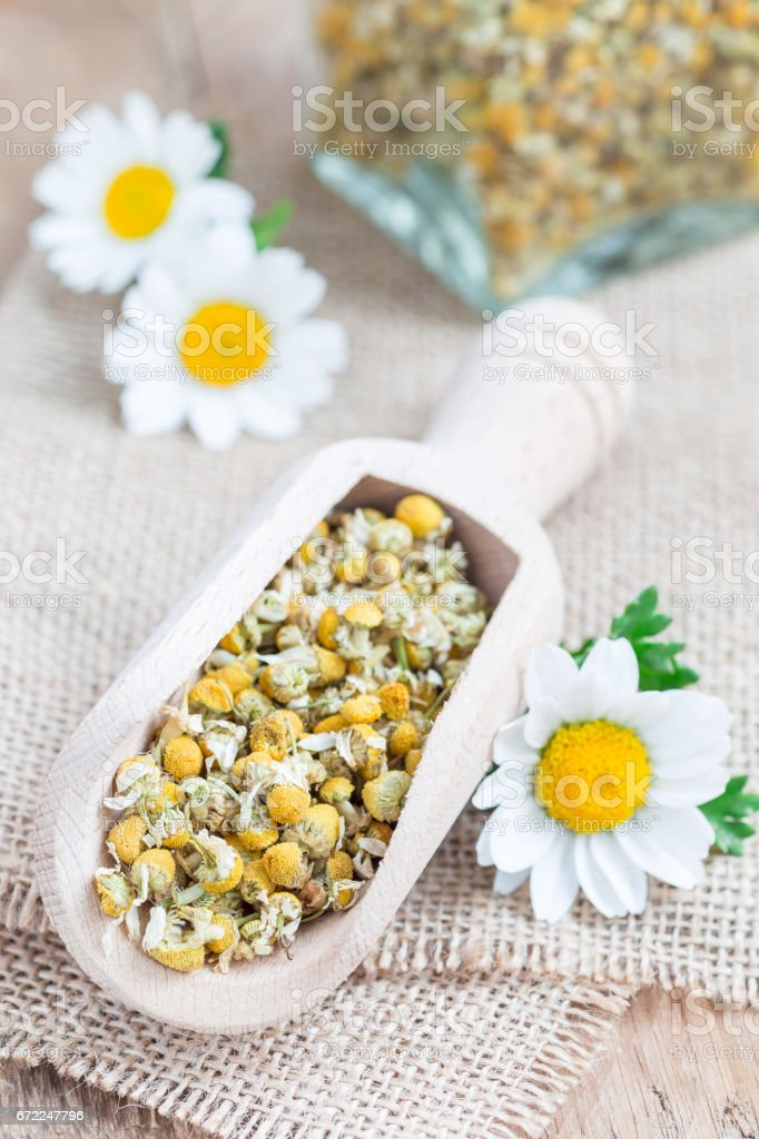 Dry chamomile tea in wooden scoop, fresh chamomile flowers and glass jar on background, vertical stock photo