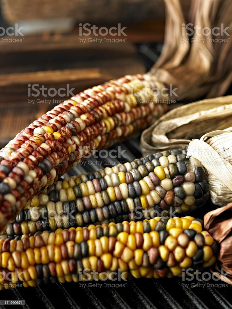 Dry Corn Cobs royalty-free stock photo