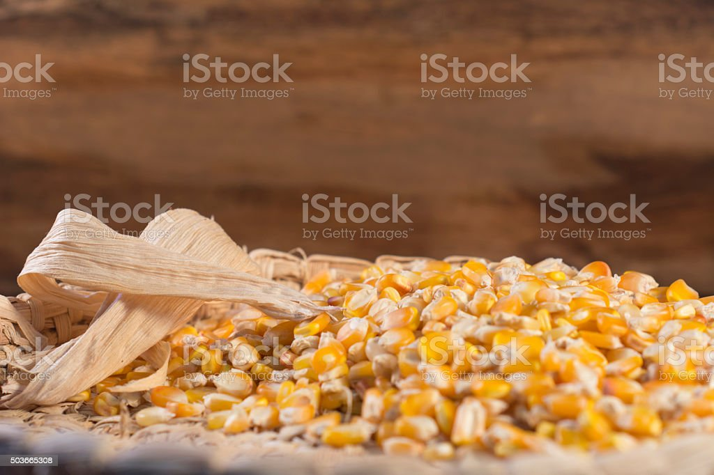 Dry corn grains placed in a handicraft stock photo