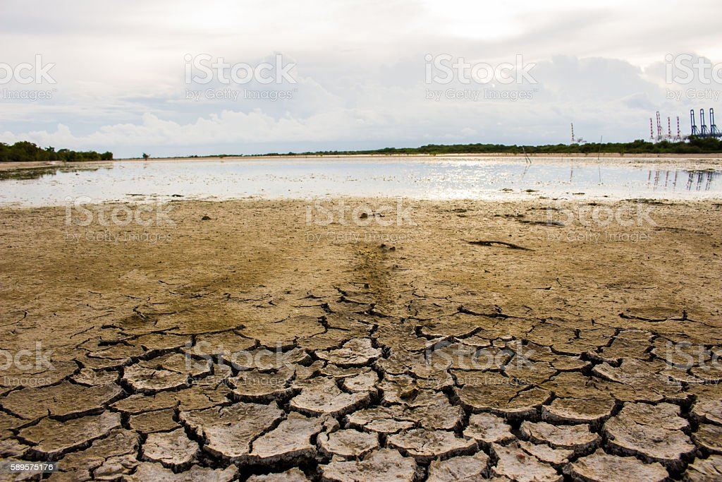 Dry cracked earth texture background drought stock photo