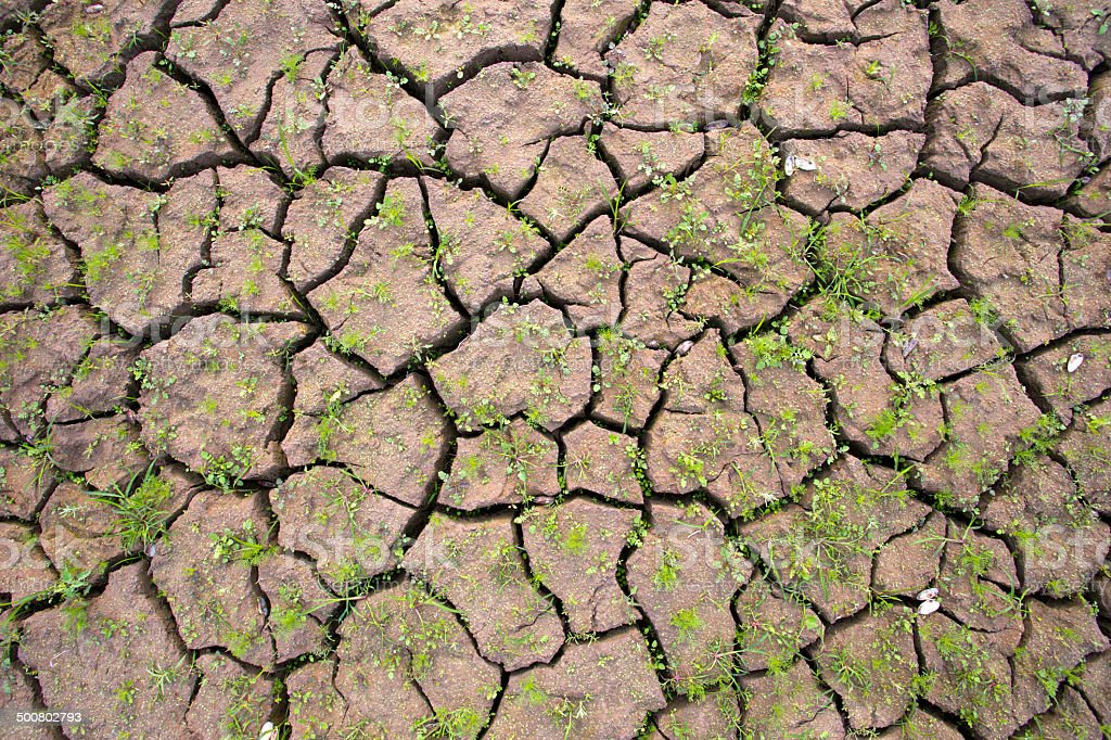Dry Cracked Ground stock photo