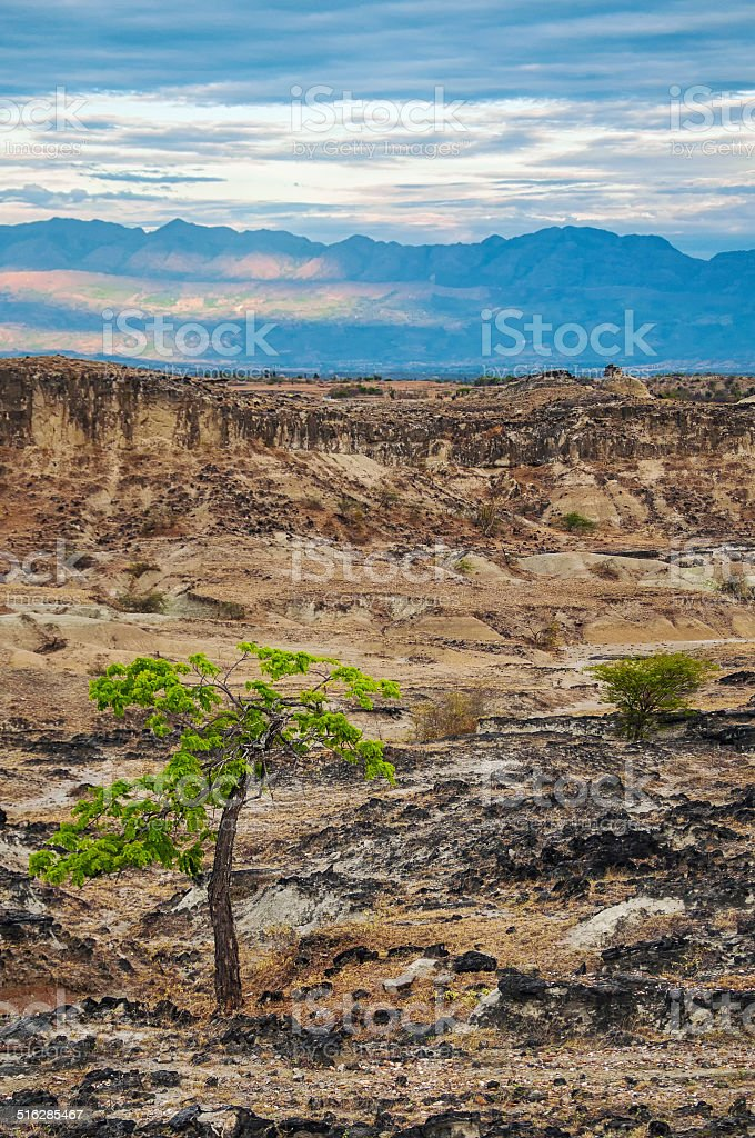 Dry Desert and Mountains stock photo