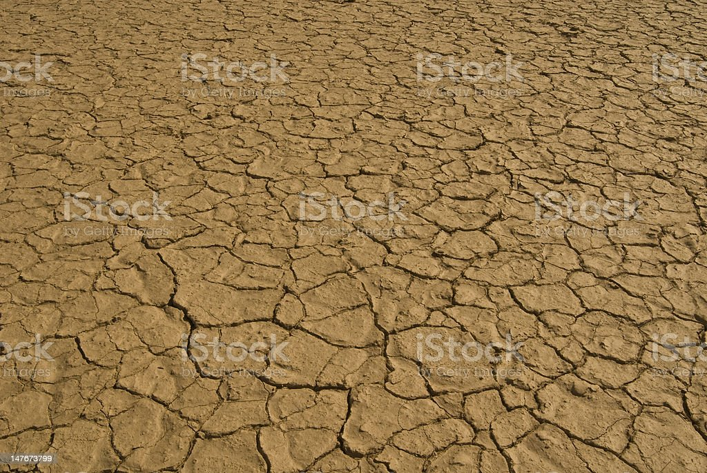 Dry desert floor stock photo