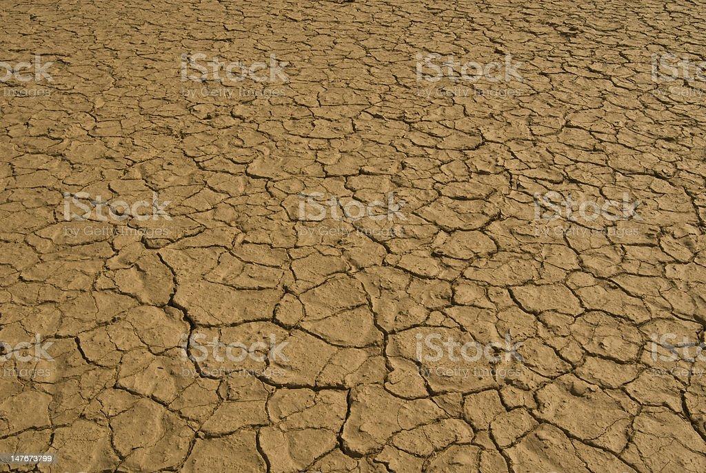 Dry desert floor stock photo
