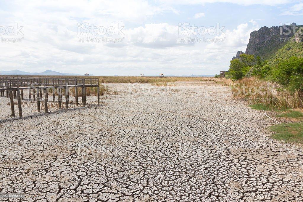 dry earth and cracked ground texture, broken split soil background Стоковые фото Стоковая фотография