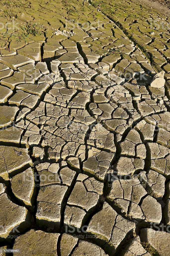 Dry Earth Blocks in Vogrscek Lake Slovenia Europe royalty-free stock photo