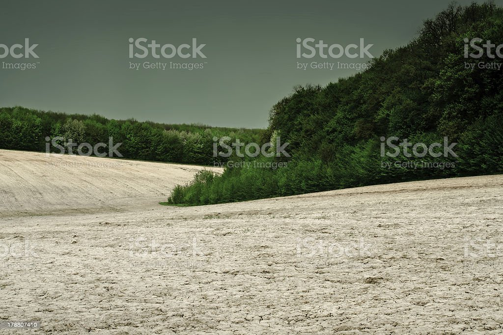Dry field before the storm royalty-free stock photo