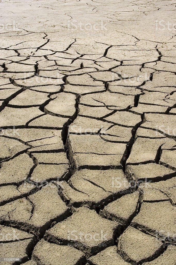 Dry Field royalty-free stock photo