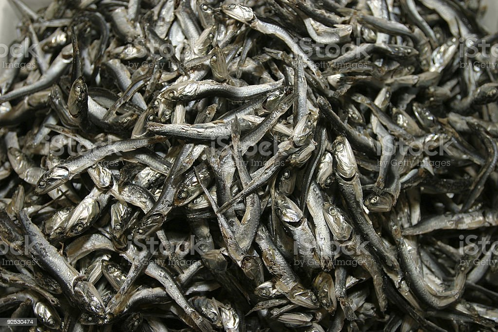 Dry Fishes royalty-free stock photo