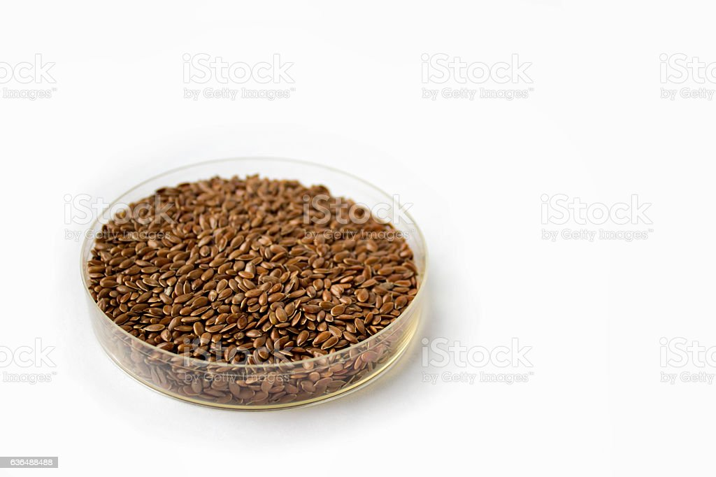 Dry flax seeds stock photo