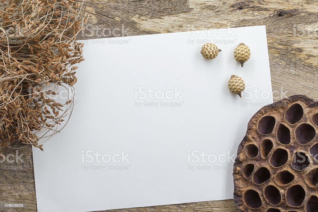 Dry flowers frame on white paper background royalty-free stock photo