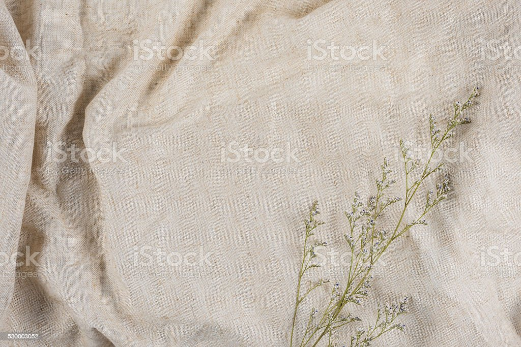 Dry flowers on brown fabric for media work. stock photo