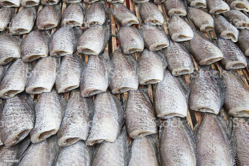 Dry Gourami fish royalty-free stock photo