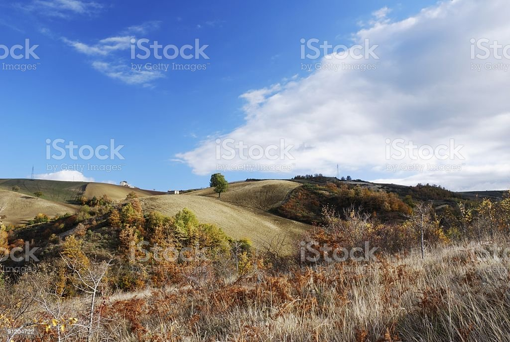 Dry grass and fall colors royalty-free stock photo
