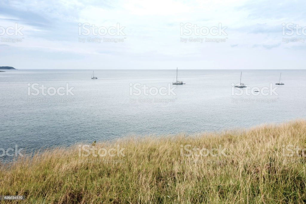 Dry grasslands at seaside overlooking the boat,phuket,thailand. stock photo