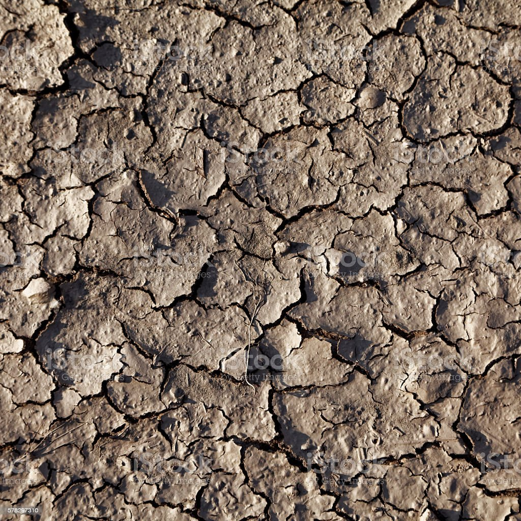 dry ground stock photo