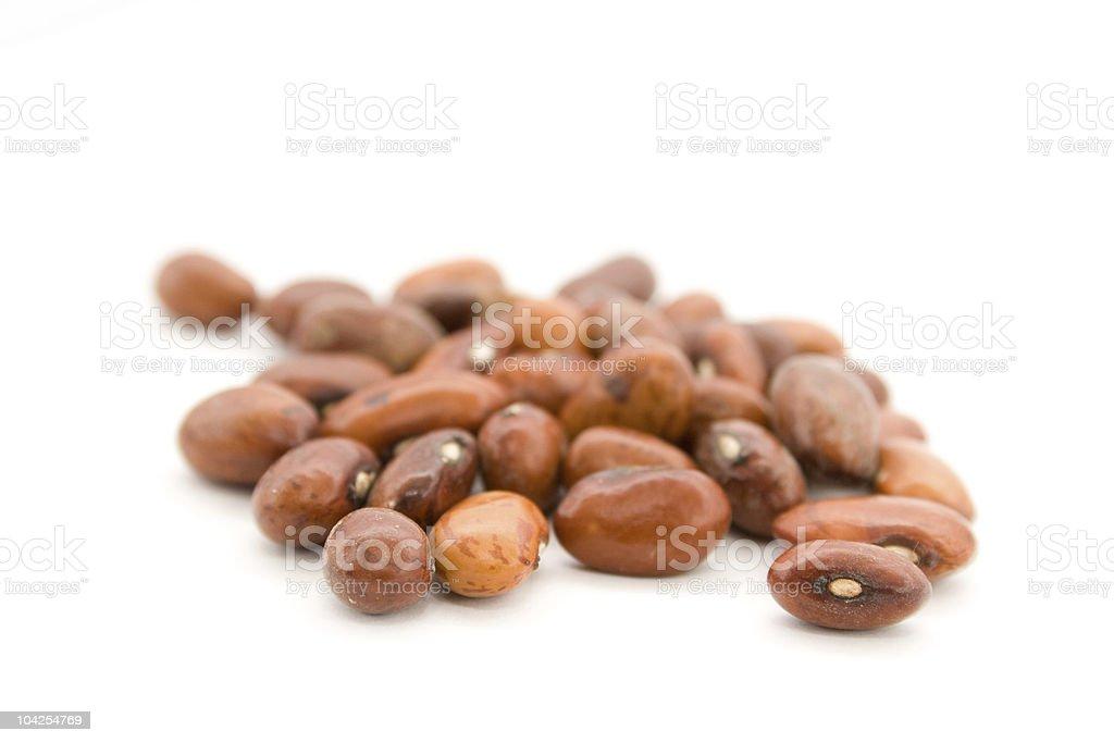 Dry haricot stock photo