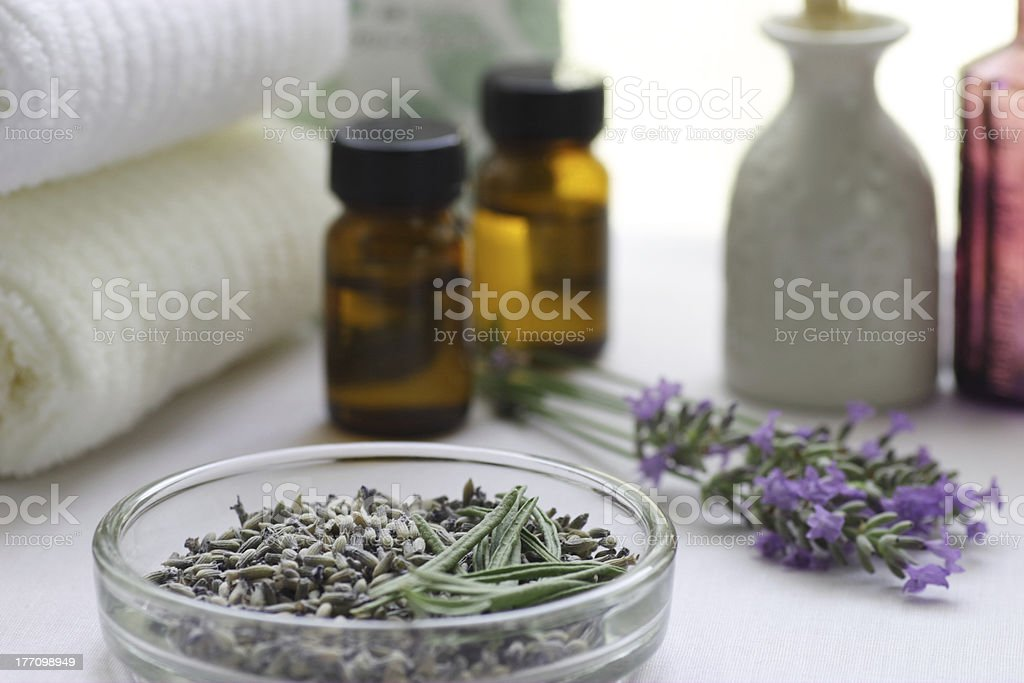 Dry herb stock photo