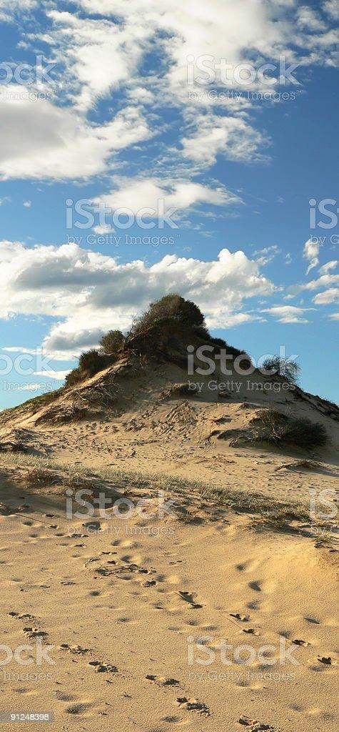 Dry island sand dune panorama near coast of Australia stock photo