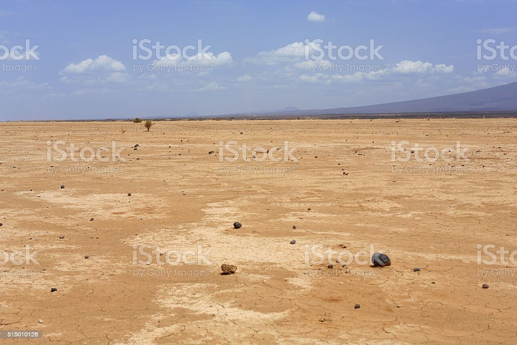 Dry landscape in the Danakil desert-Ethiopia. 0188 stock photo