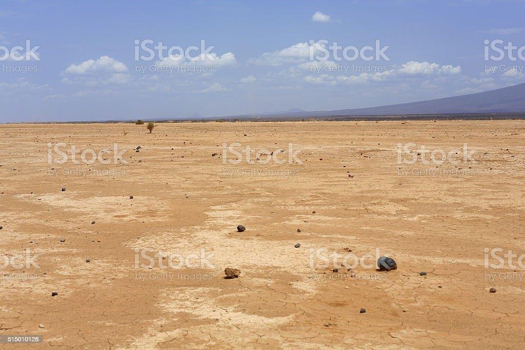 Dry landscape in the Danakil desert-Ethiopia. 0188 stock photo
