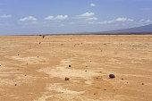 Dry landscape in the Danakil desert-Ethiopia. 0188