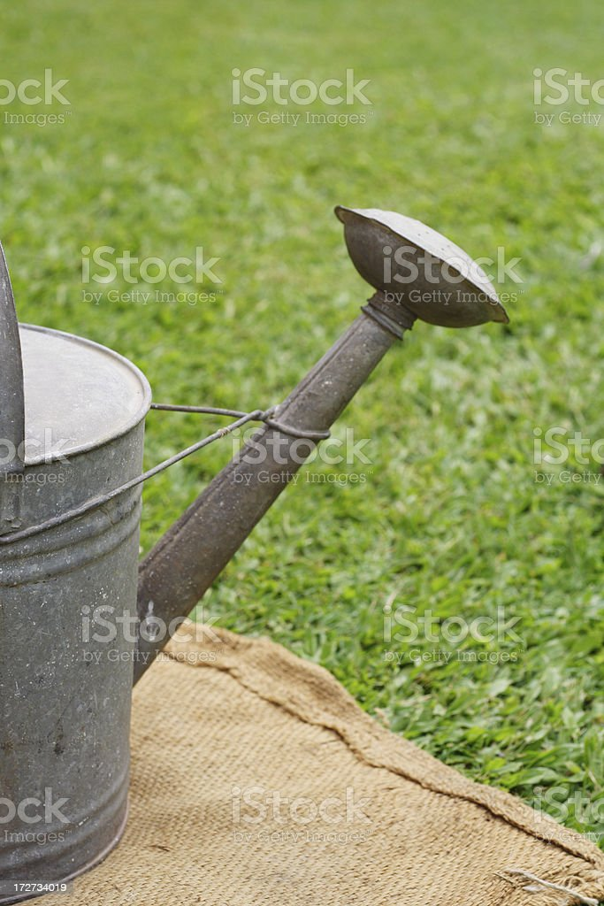 dry lawn watering royalty-free stock photo