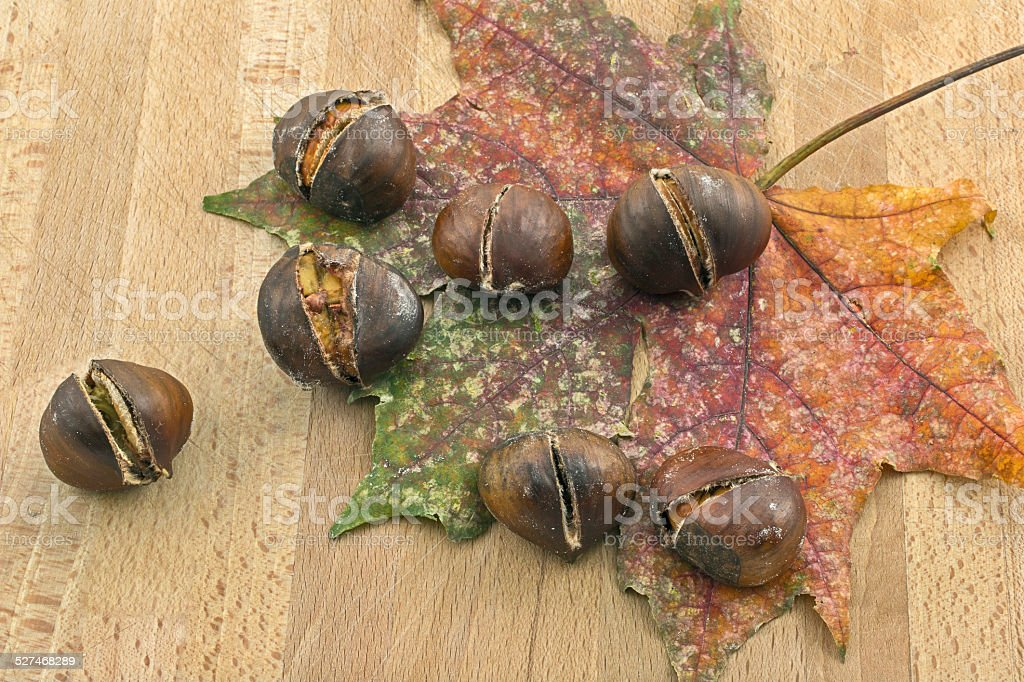Dry leaf and chestnuts stock photo