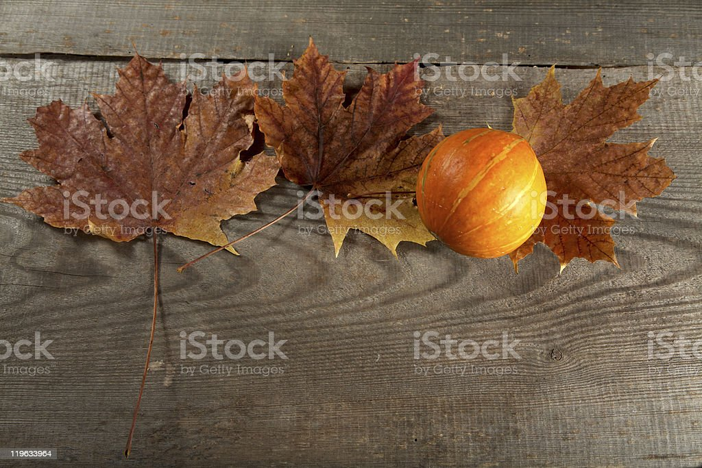 Dry leaves of  maple and pumpkin on a table stock photo