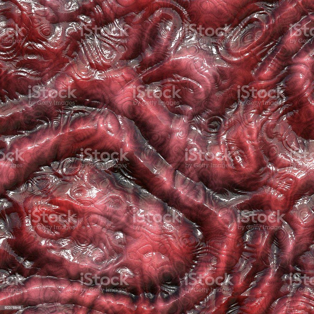 Dry lizard skin stock photo