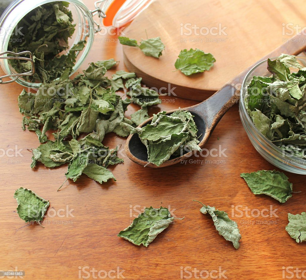 Dry mint prepared for tea stock photo