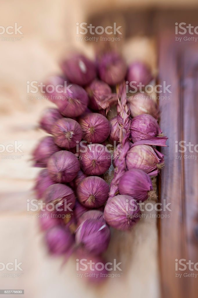 dry onion shot with lensbabies stock photo