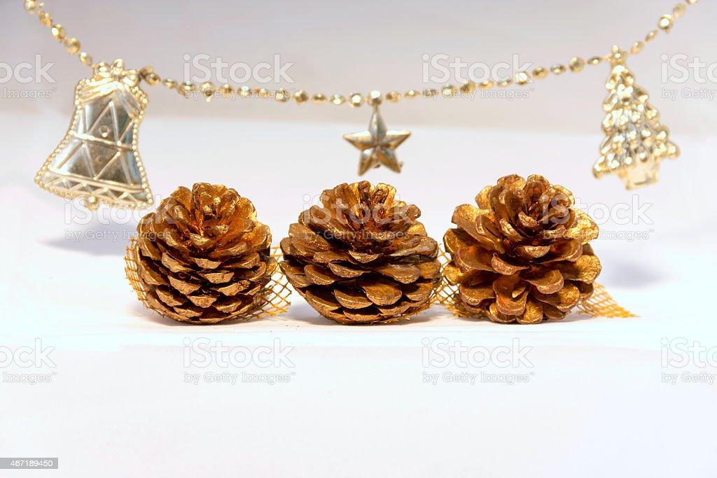 Dry pine flower Christmas set royalty-free stock photo