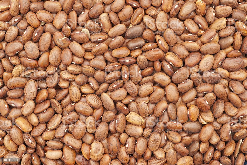 dry pinto beans background stock photo