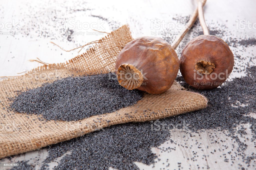 Dry poppy heads and seeds. stock photo