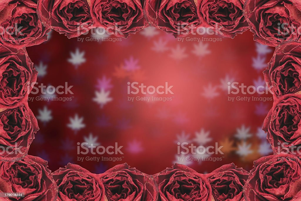 dry red rose frame on blur bokeh background royalty-free stock photo