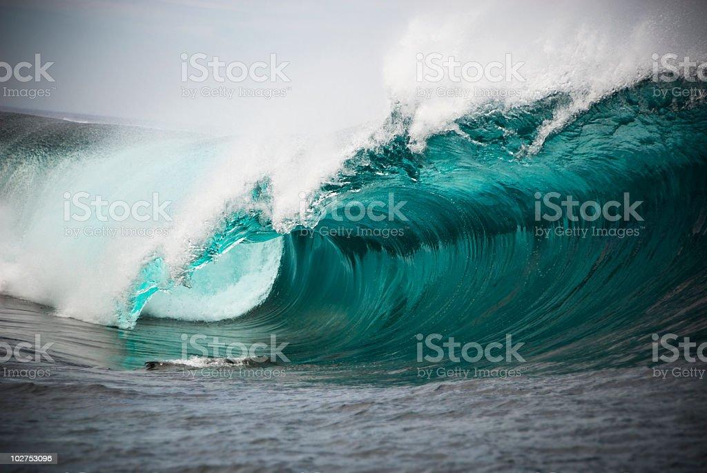 Dry Reef Barrel stock photo