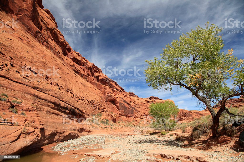 Dry River Bed in Red Rock Country, Utah stock photo