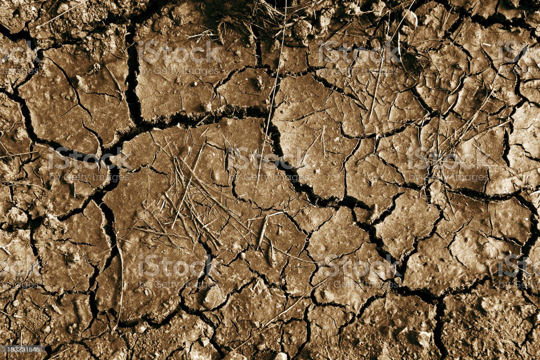 Dry Riverbead royalty-free stock photo