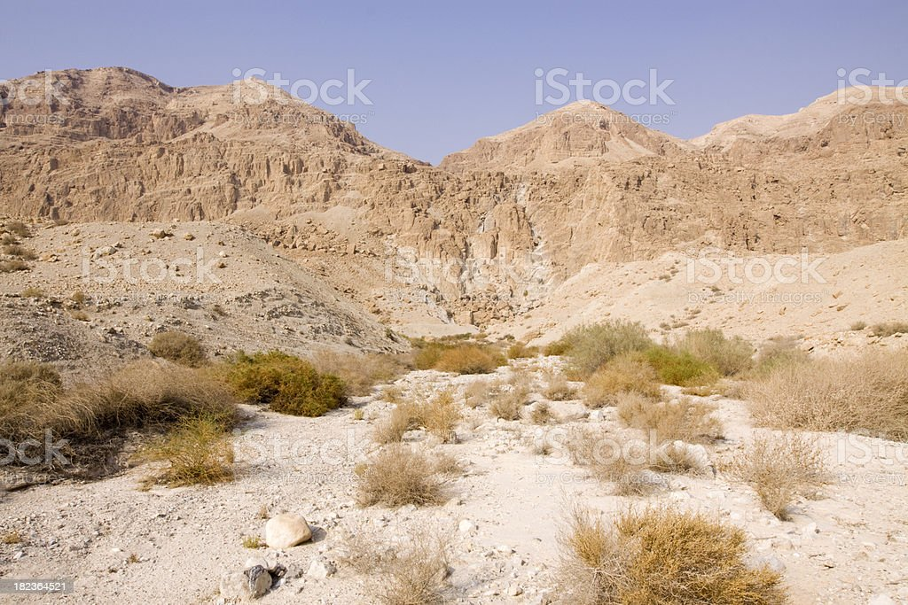 Dry riverbed in the desert royalty-free stock photo