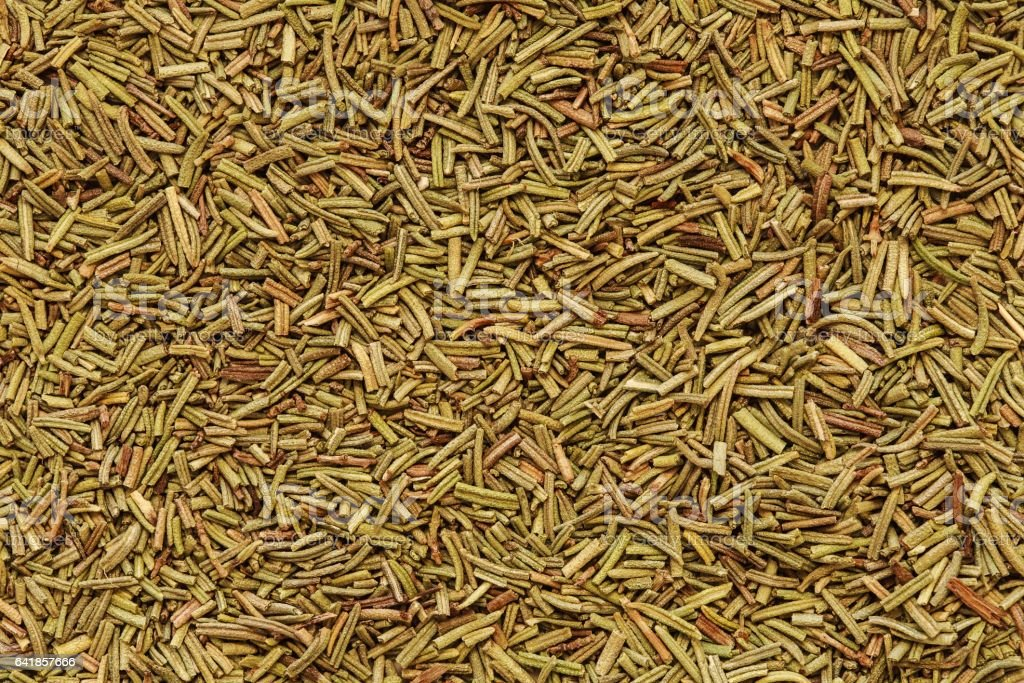 Dry rosemary background stock photo