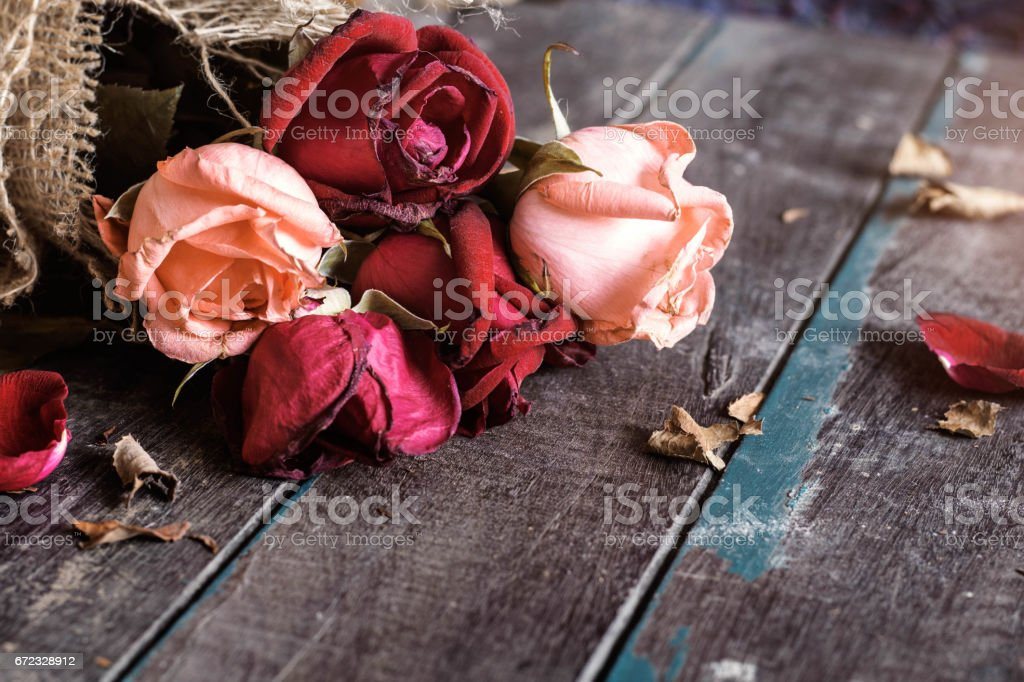 Dry roses on wooden. stock photo