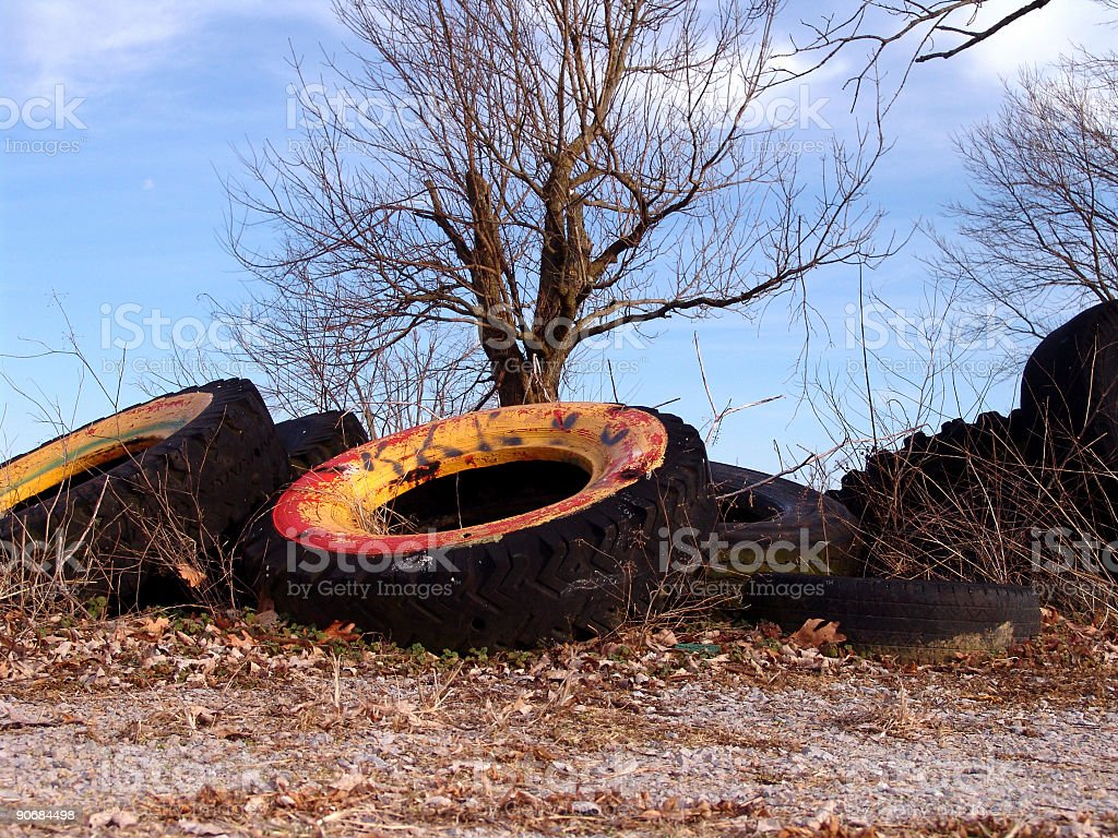 Dry Rotted Tires and Tree royalty-free stock photo