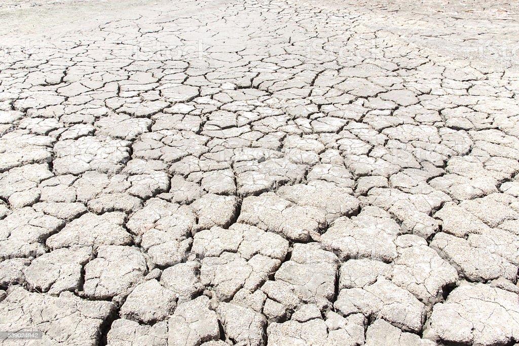 dry salt on the skin land stock photo