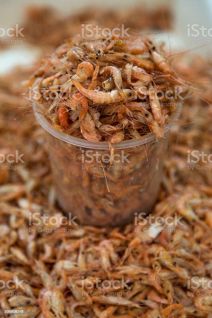Dry shrimp stock photo